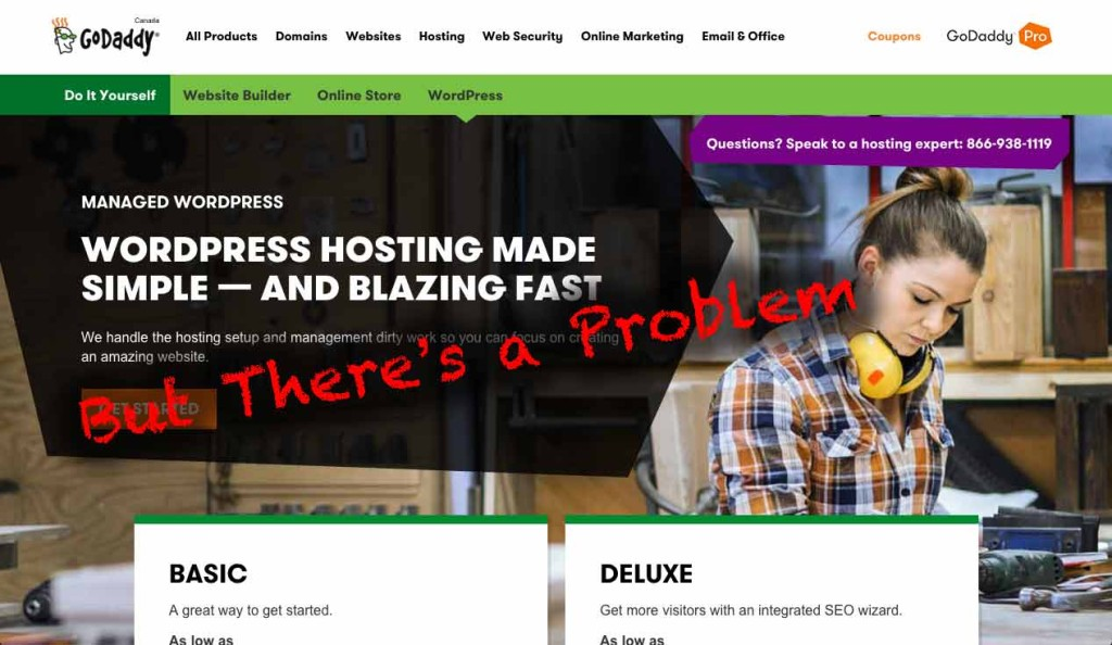 Godaddy Managed WordPress Hosting