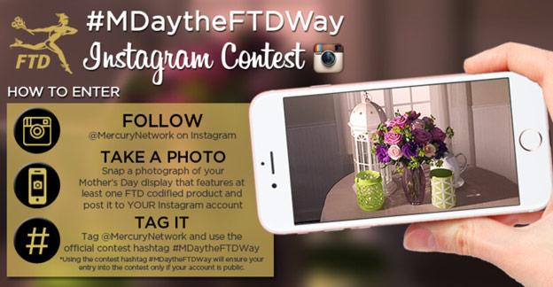 contest instagram
